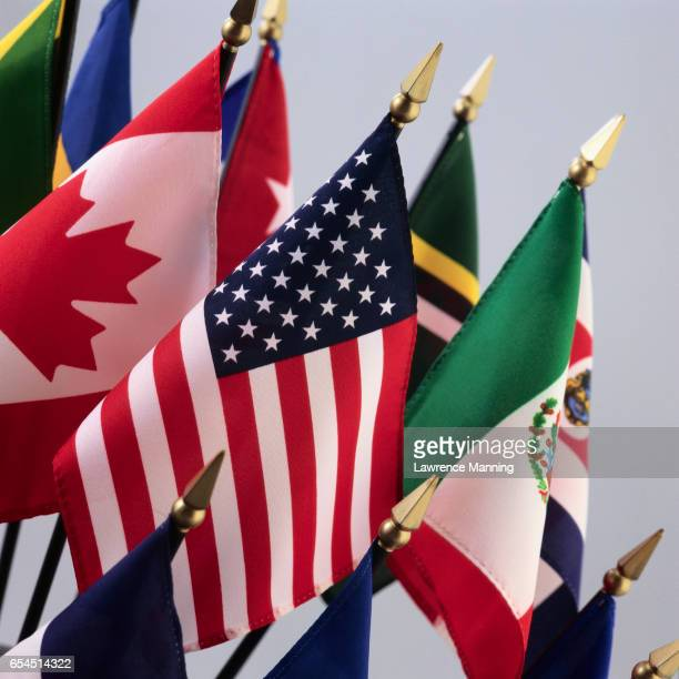 North American and International Flags