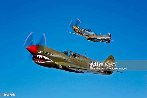a north american p-51d mustang kimberly kaye and a curtiss p-40e warhawk in flight near chino, california. - curtis p40b warhawk stock pictures, royalty-free photos & images