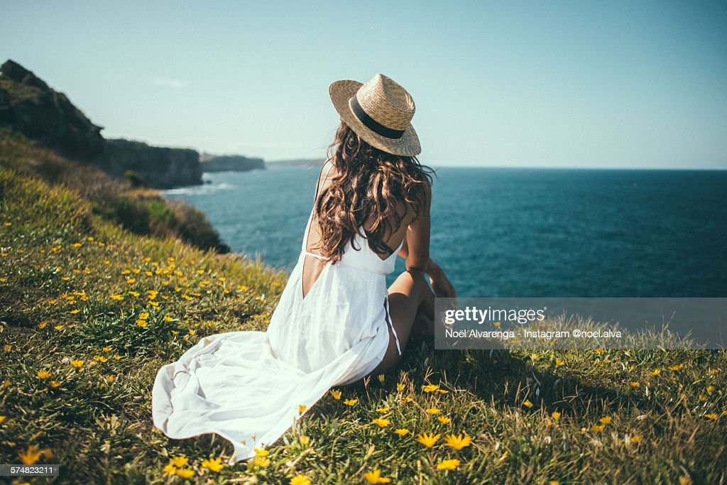 North Bondi Petals : Stock Photo