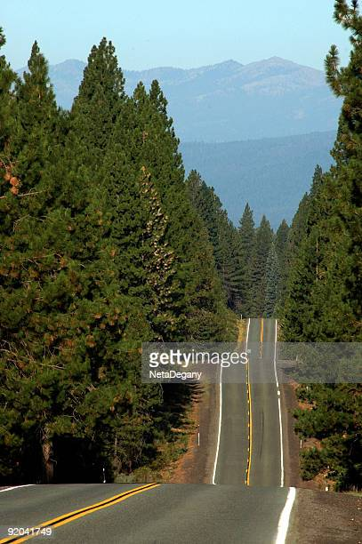 North California Scenic Road