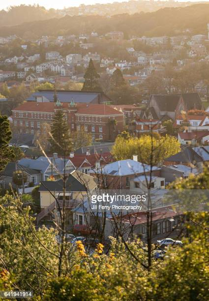 north dunedin view - otago stock pictures, royalty-free photos & images