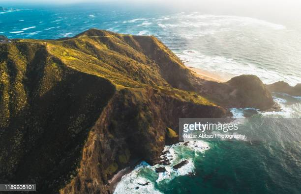 north end point of new zealand, cape reinga. - nazar abbas photography stock pictures, royalty-free photos & images