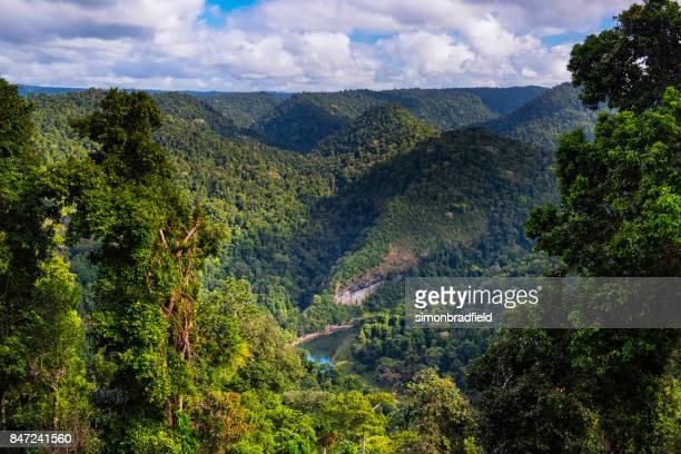 north johnstone river, atherton tablelands, australia - atherton tableland stock pictures, royalty-free photos & images