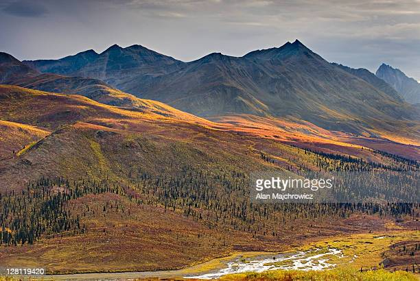 north klondike river valley, tombstone territorial park, yukon, canada - territory stock pictures, royalty-free photos & images