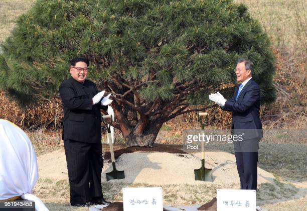 North Korean leader Kim Jong Un and South Korean President Moon Jaein attend the tree planting ceremony during the InterKorean Summit on April 27...