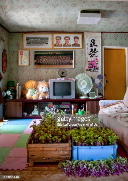 North Korean living room in a homestay North Hamgyong Province Jung Pyong Ri North Korea on May 8 2010 in Jung Pyong Ri North Korea