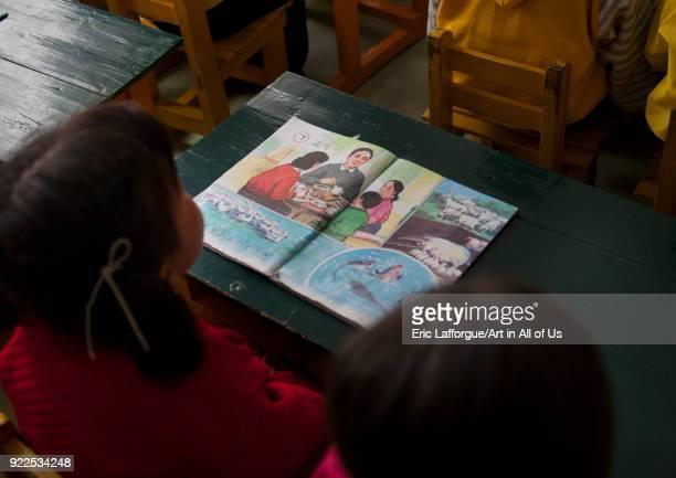 North Korean young girl at school with exercise book South Pyongan Province Chongsanri Cooperative Farm North Korea on May 16 2009 in Chongsanri...