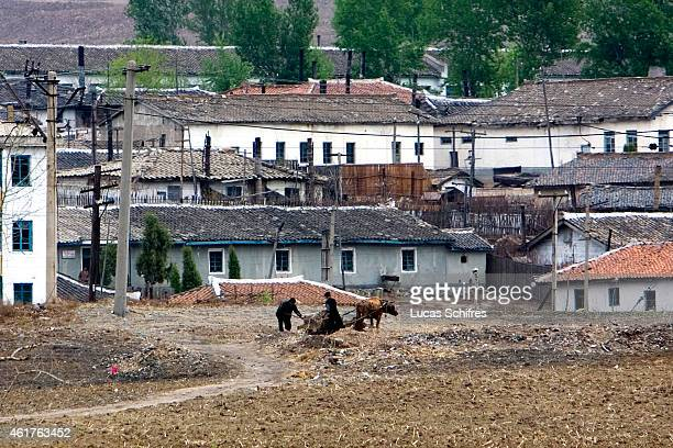 North Koreans shovel things into an oxpulled carriage as seen from Kaishantun on May 10 2009 in Sichuan province China These rare photos show bits of...