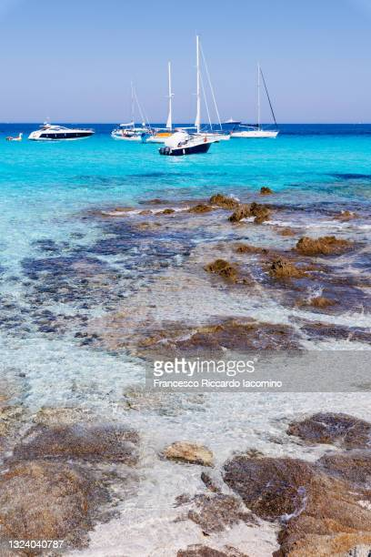 north of corsica island, saleccia beach. turquoise sea bay with pier. france - francesco riccardo iacomino france foto e immagini stock
