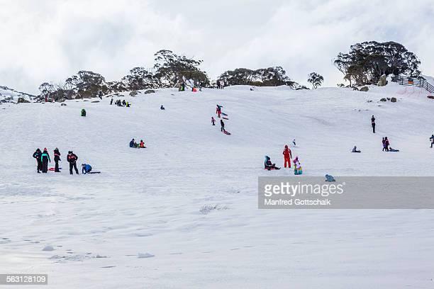 North Perisher snow field