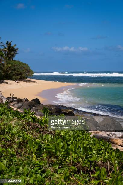 north shore beach on kauai - brycia james stock pictures, royalty-free photos & images