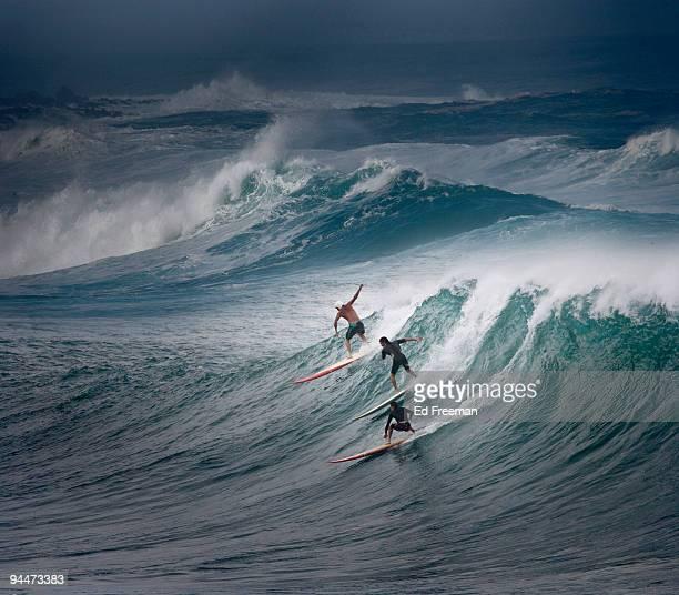 north shore surfing in oahu, hawaii - haleiwa - fotografias e filmes do acervo