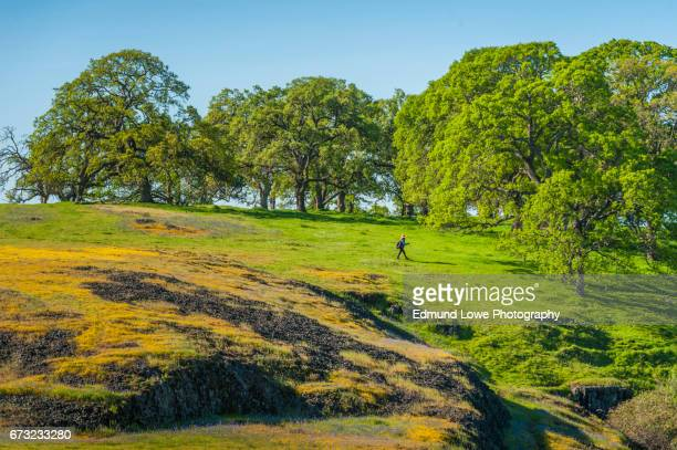 north table mountain ecological reserve, oroville, california - oroville california stock pictures, royalty-free photos & images