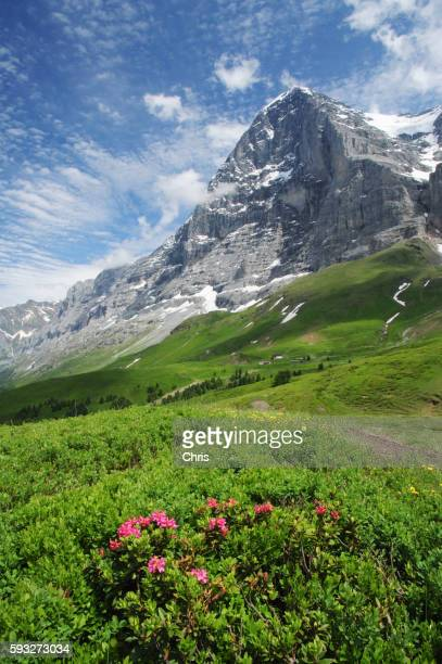 North wall of the Eiger mountain peak