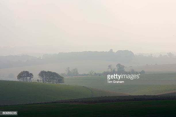 North Wessex Conservation Area in the Berkshire Downs, England