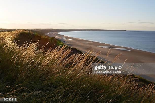 north yorkshire coastline - heidi coppock beard imagens e fotografias de stock