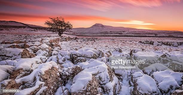 North Yorkshire dawn