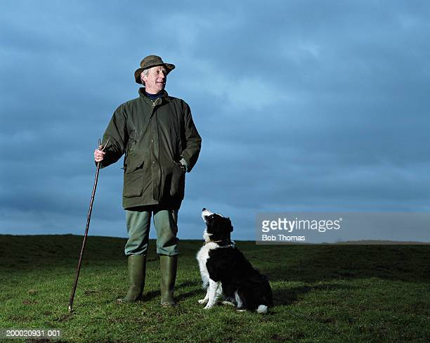 Mature man with sheepdog in field, dusk