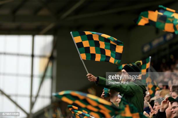 Northampton Saints fans celebrate a try during the Aviva Premiership match between Northampton Saints and Harlequins at Franklin's Gardens on May 6,...