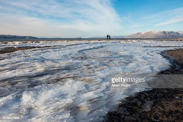 northeast greenland - northeast stock photos and pictures