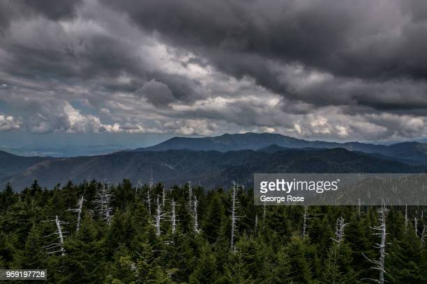 A northeast view from the Clingmans Dome overlook tower a major scenic viewing point along the Appalachian Trail is seen on May 11 2018 near Cherokee...
