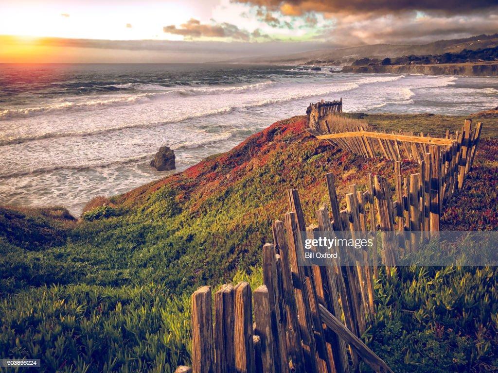 Northern California Coast : Stock Photo