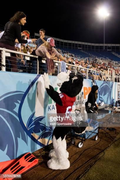 Northern Illinois University Huskies cheerleaders during the Cheribundi Boca Raton Bowl as their team competes against the University of Alabama at...