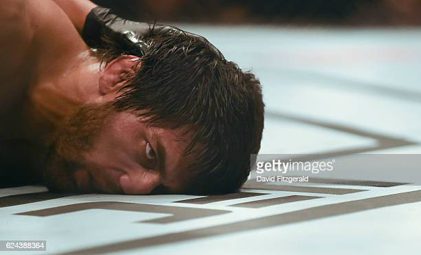 Northern Ireland Ireland 19 November 2016 Magomed Mustafaev lies on the mat unconcious after being choked out by Kevin Lee during their Lightweight...