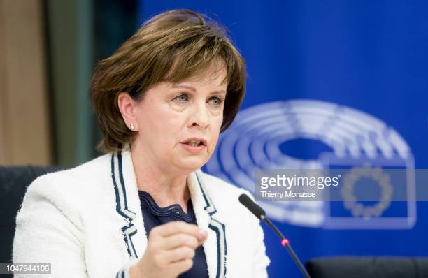 Northern Ireland Member of the European Parliament Diane Dodds talks to journalists during a news conference at in the European Parliament in...