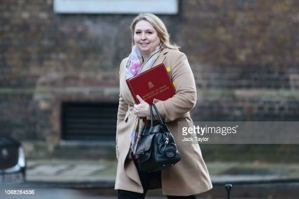 Northern Ireland Secretary Karen Bradley arrives at 10 Downing Street as Ministers attend a weekly cabinet meeting ahead of a meaningful vote debate...