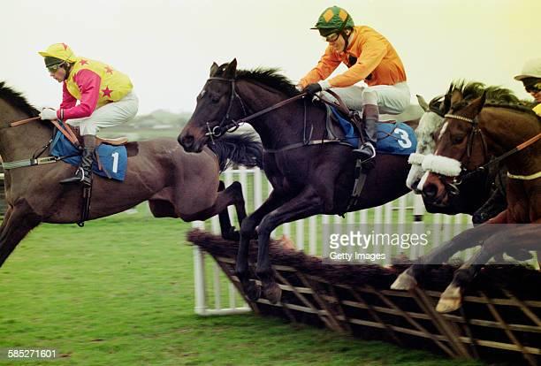 Northern Irish jockey Tony McCoy riding Theme Arena in the David Benge Novices' Handicap Hurdle at Folkestone Racecourse Kent 19th February 1997...