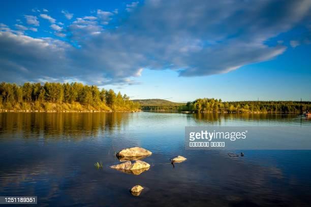 northern landscape on the lake kovdozero in the murmansk region, the village of zelenoborsky. northern white nights in june, beautiful clouds and fir forest - meeroever stockfoto's en -beelden
