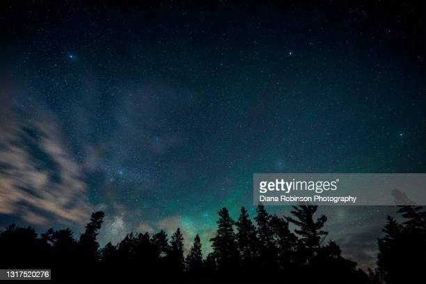 northern lights, airglow and clouds with stars over the forest at wilderness state park near mackinaw city, michigan - michigan stock pictures, royalty-free photos & images