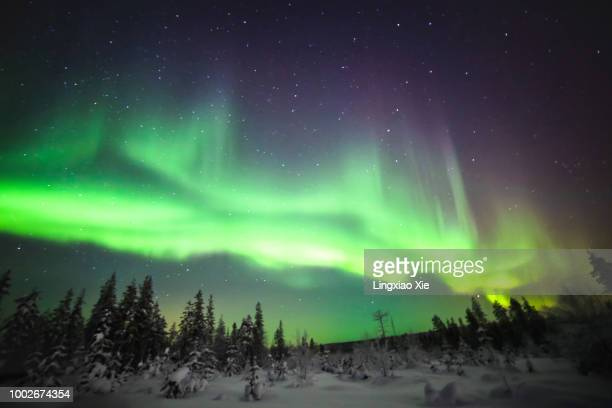 northern lights, also known as aurora borealis in lapland, finland - finlandia fotografías e imágenes de stock
