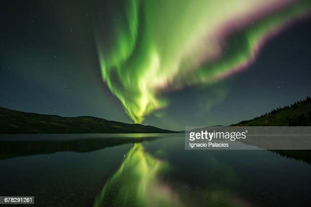 Northern Lights, Aurora borealis, Fox Lake