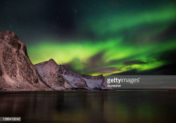 northern lights aurora borealis in steinfjord, norway by night. - northern norway stock pictures, royalty-free photos & images