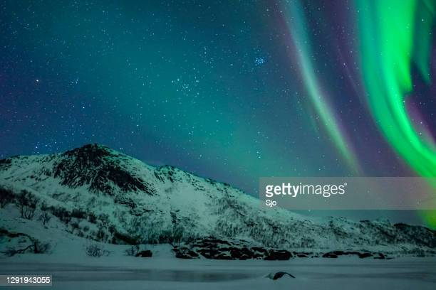 """northern lights, aurora borealis over the lofoten islands in northern norway during winter - """"sjoerd van der wal"""" or """"sjo"""" stock pictures, royalty-free photos & images"""
