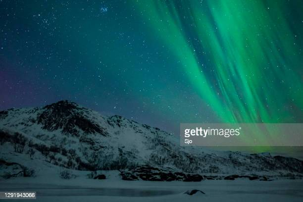 "northern lights, aurora borealis over the lofoten islands in northern norway during winter - ""sjoerd van der wal"" or ""sjo"" stock pictures, royalty-free photos & images"