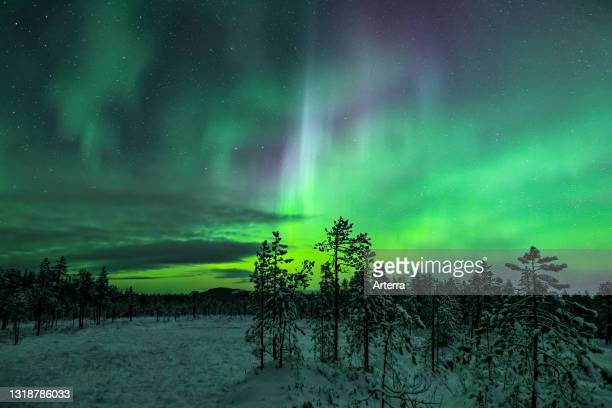 Northern Lights / Aurora borealis, weather phenomenon showing natural light display over Jokkmokk in winter, Norrbotten County, Lapland, Sweden.