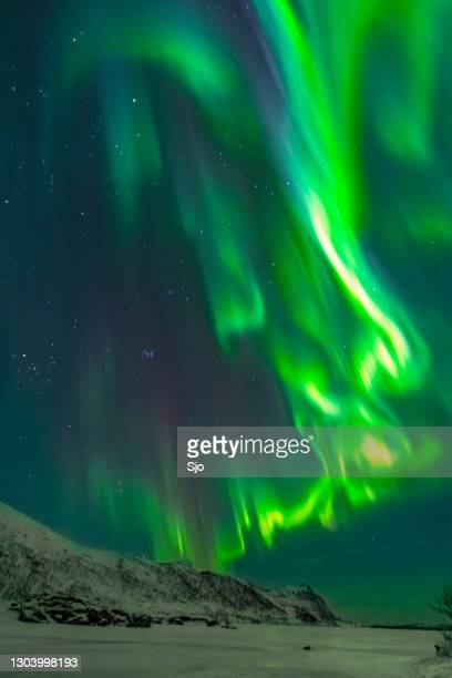 "northern lights - autora borealis - night view over the lofoten island in norway during a cold winter night in the arctic - ""sjoerd van der wal"" or ""sjo"" stock pictures, royalty-free photos & images"