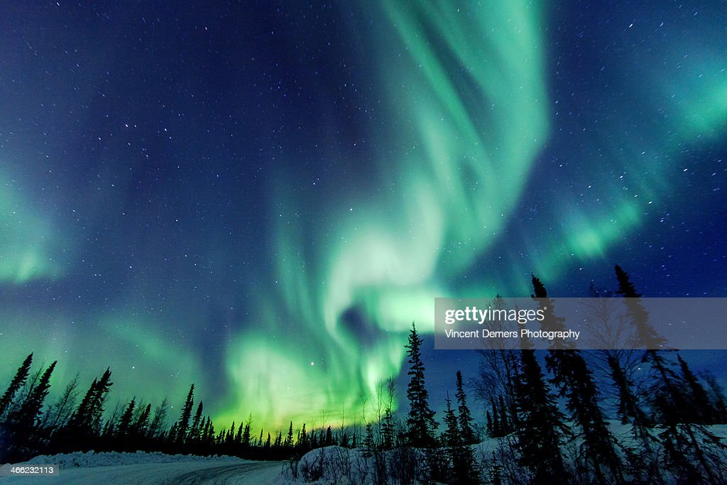 Northern Lights close to Yellowknife in the Northw : Stockfoto