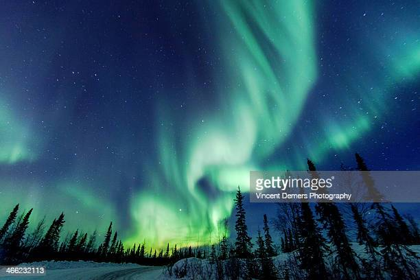 northern lights close to yellowknife in the northw - カナダ ストックフォトと画像