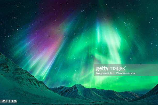 northern lights in alaska - aurora borealis stock pictures, royalty-free photos & images