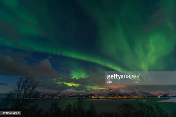 """northern lights in northern norway during a cold winter night at senja island - """"sjoerd van der wal"""" or """"sjo"""" stock pictures, royalty-free photos & images"""