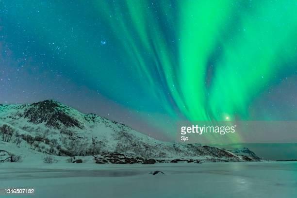 """northern lights in the winter night sky over the lofoten in norway - """"sjoerd van der wal"""" or """"sjo"""" stockfoto's en -beelden"""