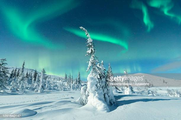 northern lights on the snowy landscape, lapland - finland stock pictures, royalty-free photos & images
