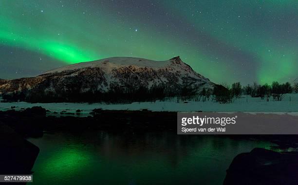 """northern lights over the lofoten islands in norway - """"sjoerd van der wal"""" stock pictures, royalty-free photos & images"""
