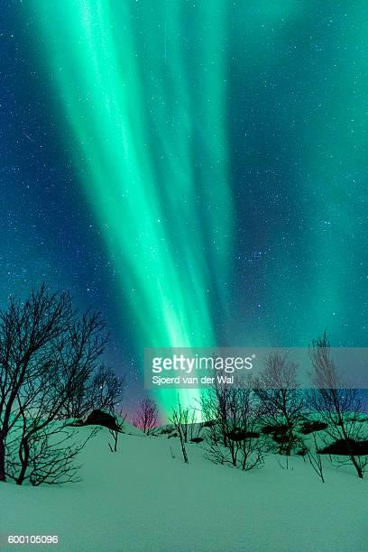 """northern lights over the lofoten islands in norway - """"sjoerd van der wal"""" ストックフォトと画像"""