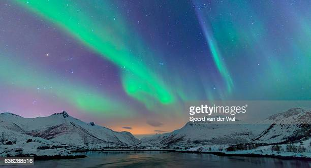 northern lights over the lofoten islands in norway - aurora borealis stock pictures, royalty-free photos & images