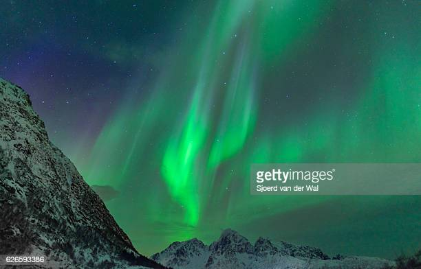 "northern lights over the mountains at the lofoten islands norway - ""sjoerd van der wal"" stock-fotos und bilder"